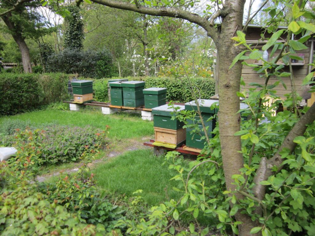 De Tuinen Van West Amsterdam.Avbb Bijenpark